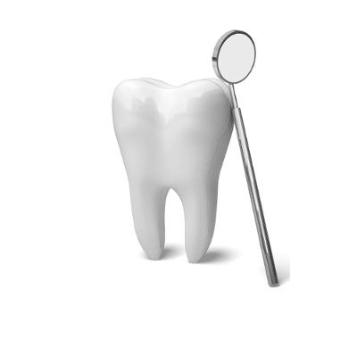 Dento-Maxillofacial Radiologist